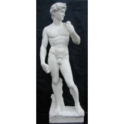 LS 316 Davide di Michelangelo h. cm. 180