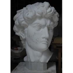 LA 38 Testa Davide di Michelangelo h. cm. 90