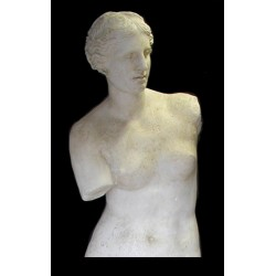 LA 15 Torso Venere di Milo h. cm. 85