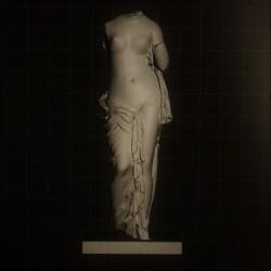 LT_7 Torso Femminile h. cm. 155