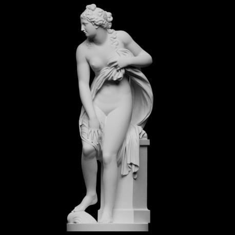 LS 383 Venus_Rising h. cm. 170