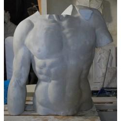 LA 39 Torso Davide di Michelangelo h. cm. 138