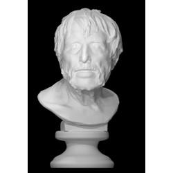 LB 235 Pseudo Seneca (Museo Archeologico Nazionale di Napoli) h. cm. 59