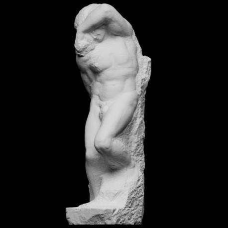 LS 391 Schiavo Giovane di Michelangelo h. cm. 256