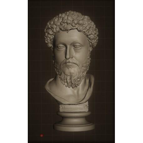 LB 338 Testa Marco Aurelio h. cm. 50