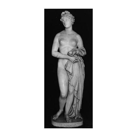 LS 344 Venere Verticordia h. cm. 173